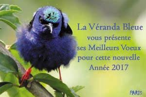 voeux-2017-la-veranda-bleue-cpa