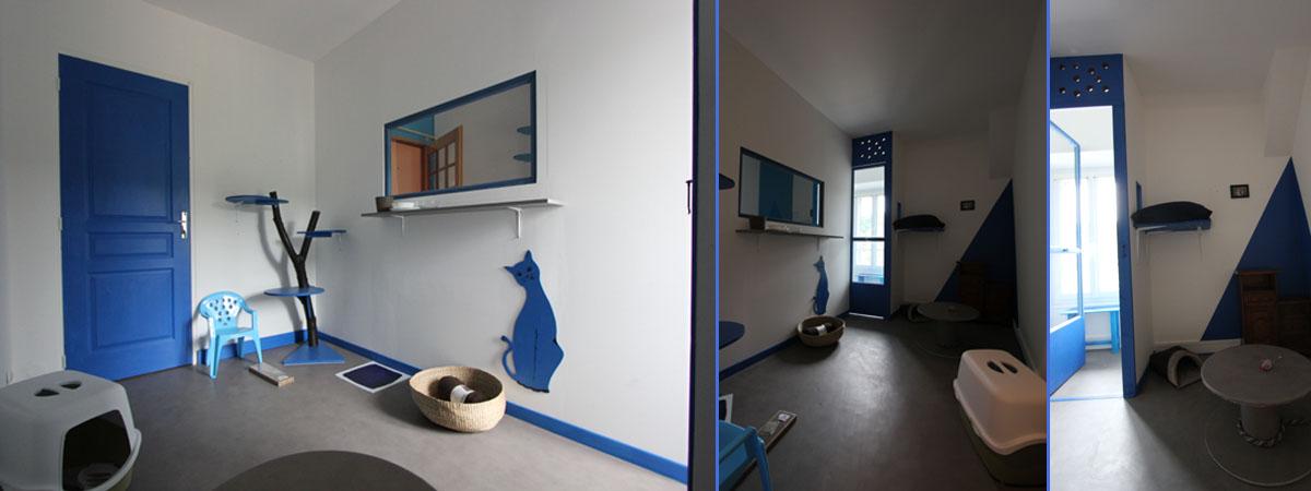 chambre individuelle bleu comète pension chat La Veranda Bleue