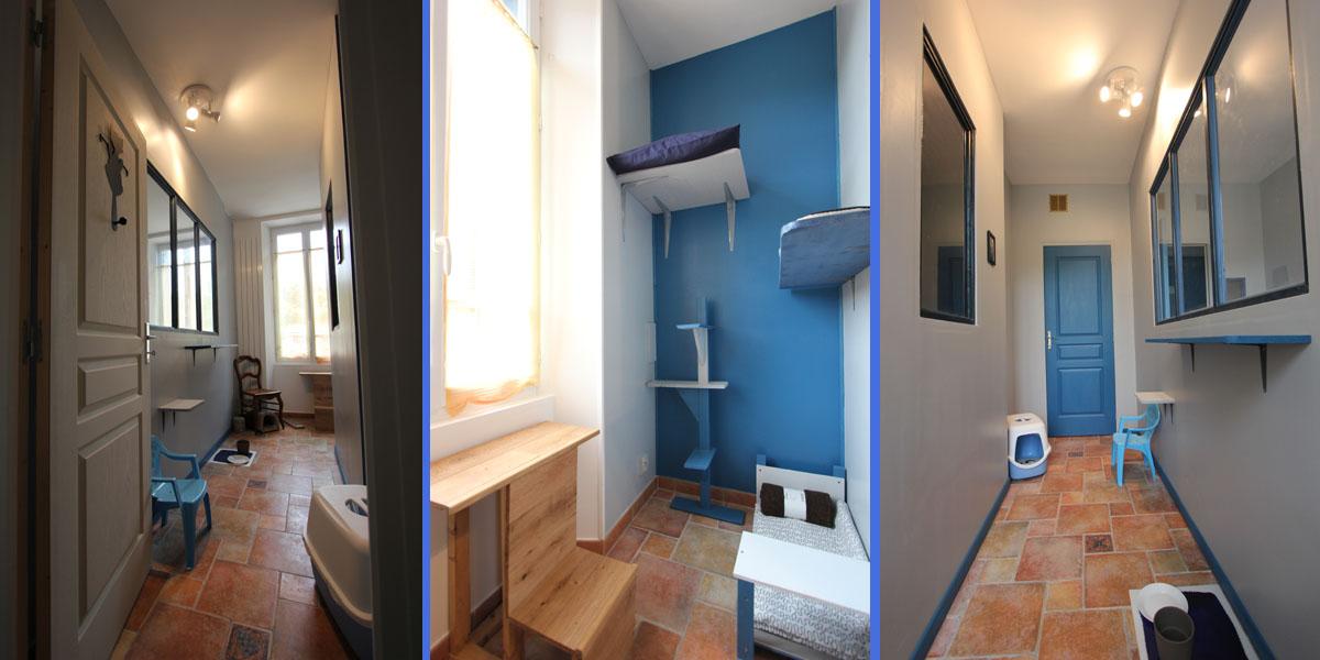 chambre individuelle bleu evasion pension chat La Veranda Bleue