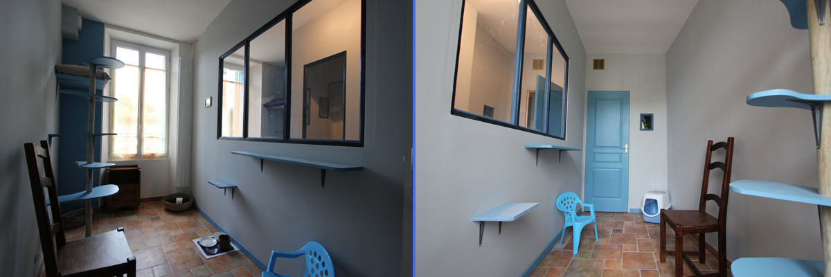chambre individuelle bleu rêveur pension chat La Veranda Bleue